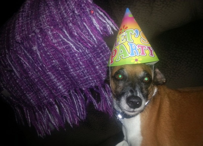 Bertie's sixth birthday