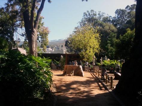 Madame Zingara's in Company's Garden.