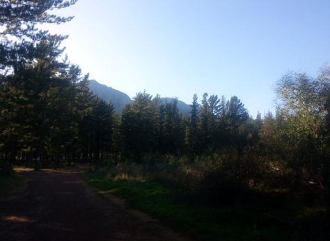 Paradyskloof nature reserve