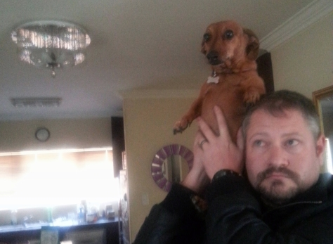 Tall dog