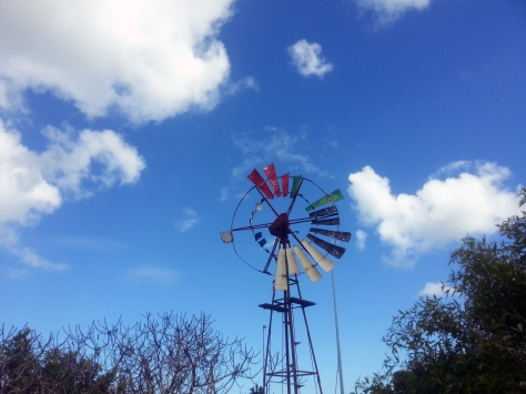 Windmill at the Melkbos Farmstall