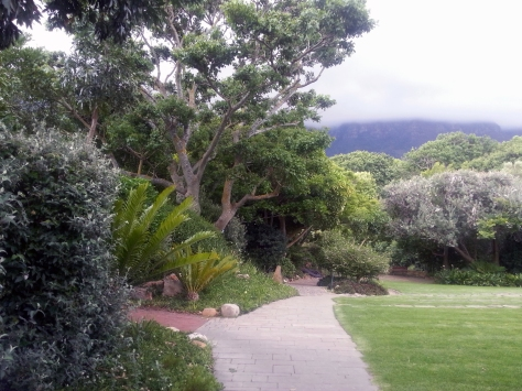 Cloudy sky at The Vineyard Hotel