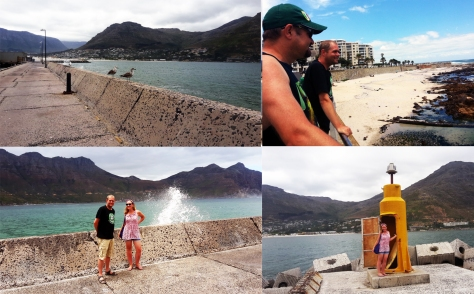 Hout Bay sightseeing