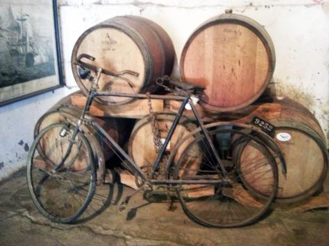 Muratie wine cellar