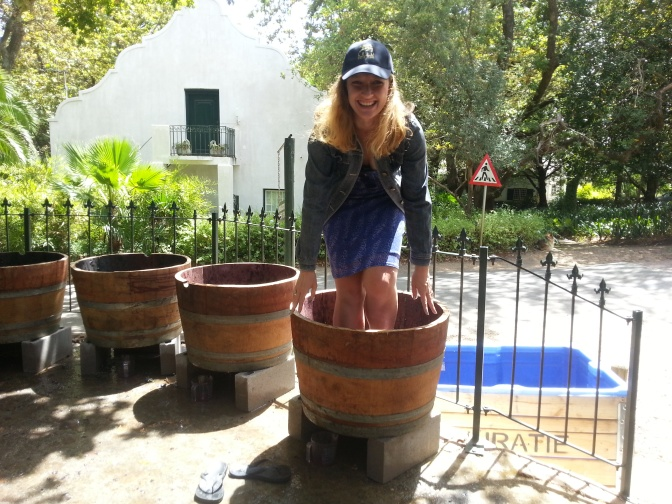 Stomping grapes at the Muratie Harvest Festival and conference eats at the Cullinan Hotel