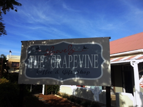 The Lovely Grapevine in Citrusdal