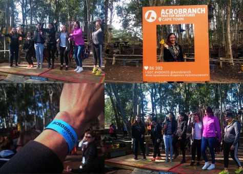 Acrobranch in Constantia