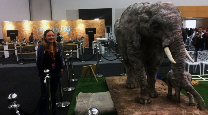 Rainbows after #CapeStorm and life-size elephant cakes at GFWS
