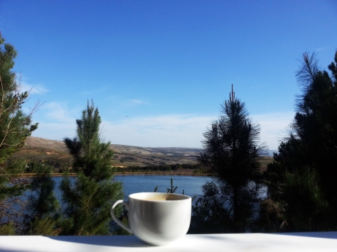 Coffee in nature at Old Mac Daddy in Elgin