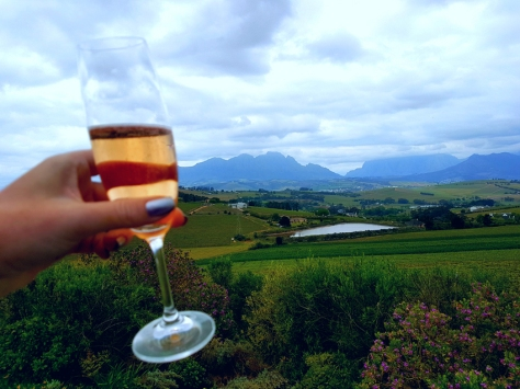 Champagne Day at Landscap, Stellenbosch