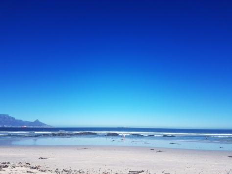 Musselling in Cape Town