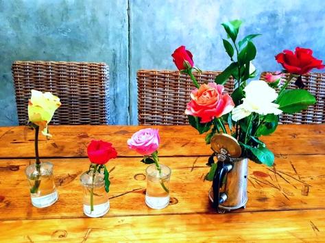 Klein Roosboom roses