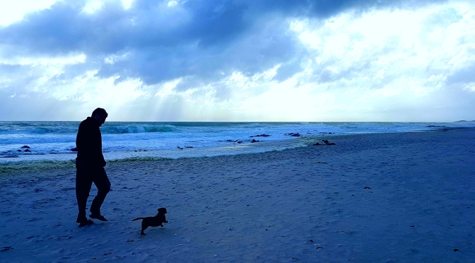 Beach dogs, art galleries and a splash of coffee