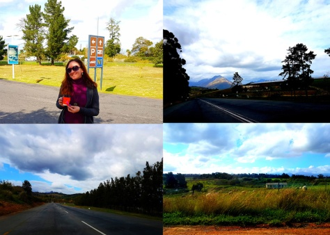 Road trip to Stellenbosch