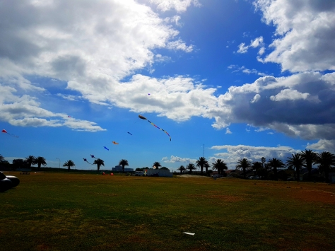 Kites near Melkbos