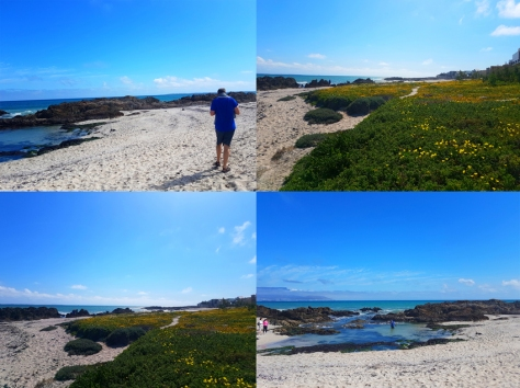 Cape Town beach visit