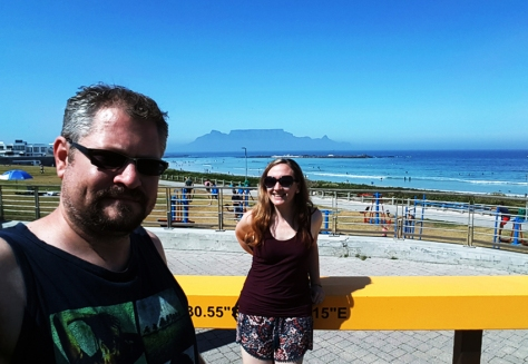 Table Mountain, as seen from Eden on the Bay.