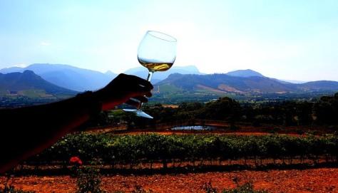Wine-tasting at La Petite Ferme.