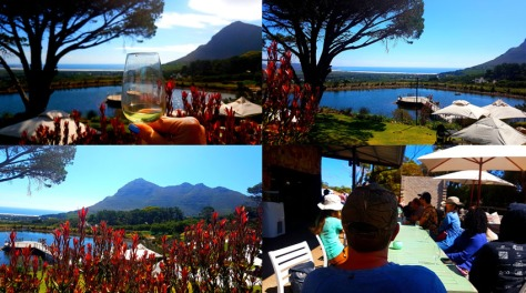 Cape Point Vineyards.
