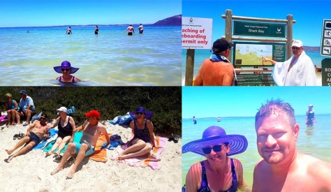 Swimming at Shark Bay