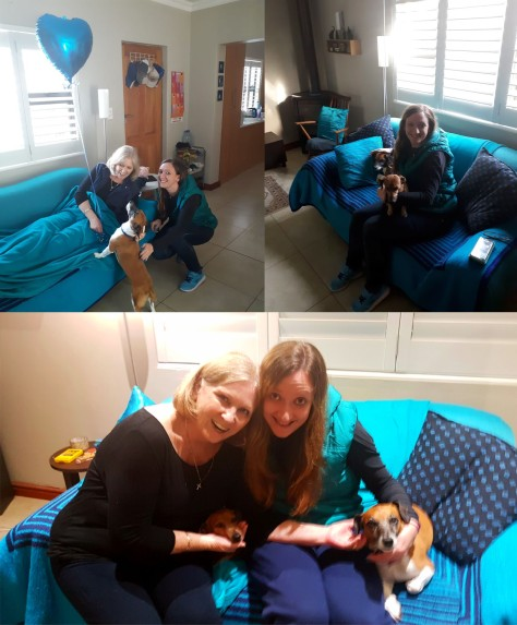 Various snaps of Mother's Day unfolding in Mum's lounge that evening. Such sweet doglets.