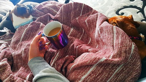 My Saturday afternoon in a picture: Coffee, dogs, blankets and books.