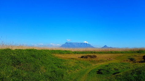 Picture perfect view of the Vlei, about 1.5km's walk from home.