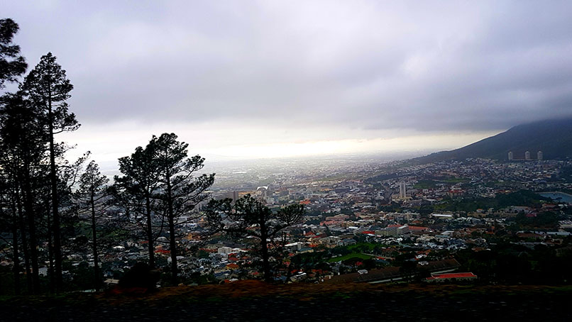Look at that view! Cape Town, as seen from Signal Hill on the City Sightseeing red bus tour.