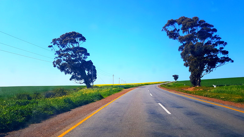 We had an open road on our way to Paarl to review the winter 'chef's special trio' at the new 'Eat at Perdeberg' restaurant.
