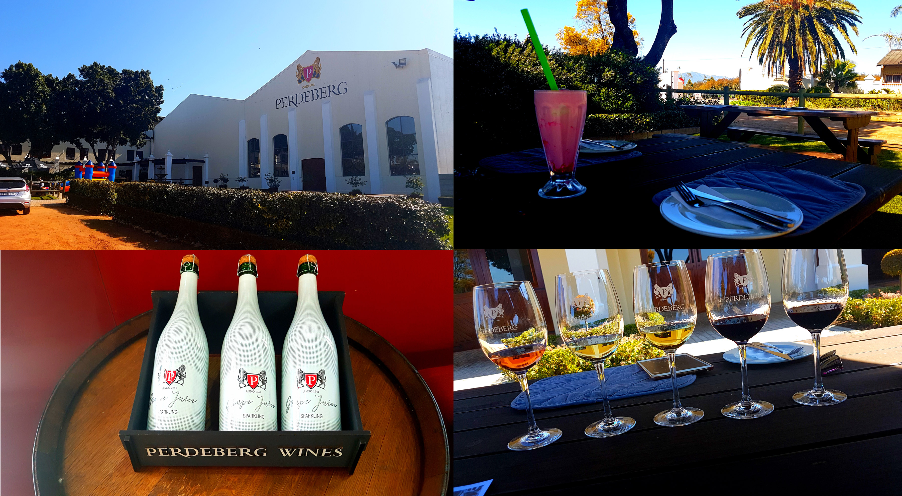 It was perfect weather for sitting outside, so sit outside we did. See the main Perdeberg Cellar building, as well as their grape juice bottles, my strawberry shake and the wines Husband sampled.